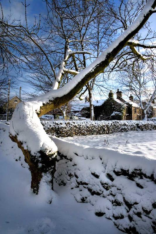 snow2010-4