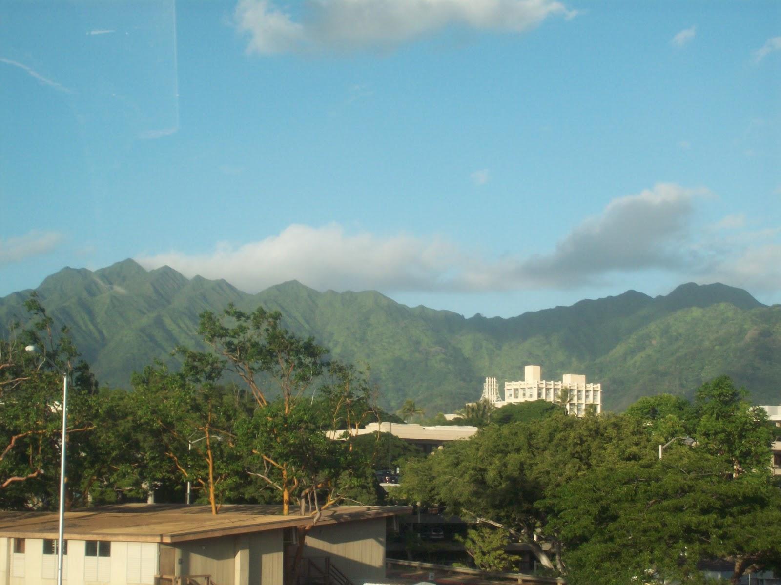 Hawaii Day 3 - 114_1152.JPG