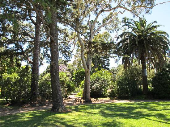 external image williamstown-botanic.jpg