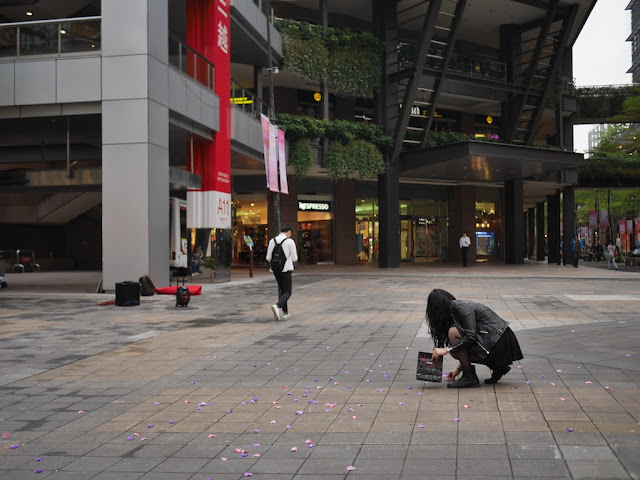 woman picking up flower petals