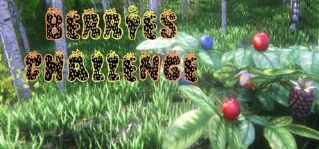 Berries Challenge Crack