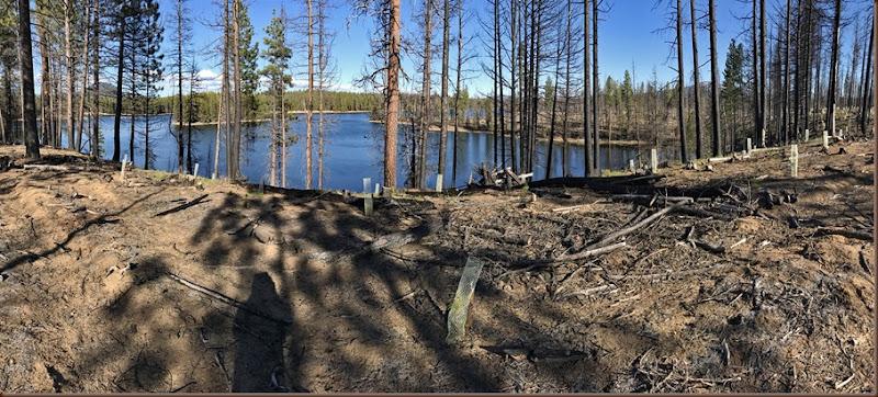 La Pine OR80-19 May 2017