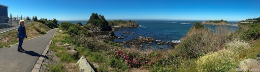 walking at Chetco Point (12 of 40)
