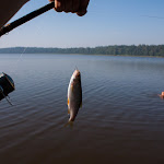 20150816_Fishing_Ostrivsk_136.jpg