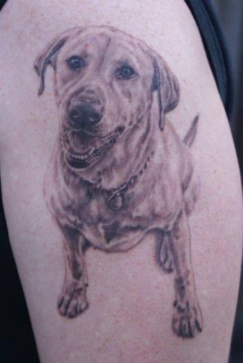 Chris's Dog