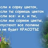 если я сорву цветок если ты сорвешь цветок если все: и я, и ты если мы сорвем цветы, опустеют все поляны и не будет красоты
