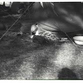 n026-025-1968-tabor-szigliget.jpg
