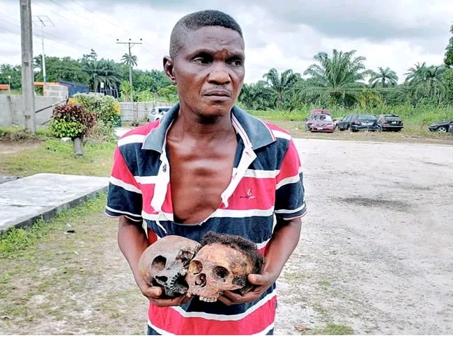 Native Doctor Arrested With 2 Skulls; Passengers Caught Carrying Human Blood (Pix)