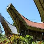 0210_Indonesien_Limberg.JPG