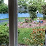 New England - 2013