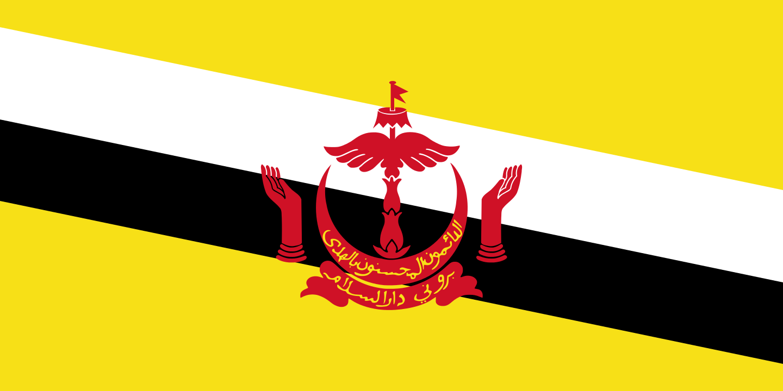 파일:브루나이 국기.png