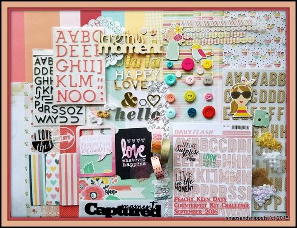 Peachy Keen Day Kit-001