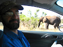 Here's Woody with a close-up view of an elephant!