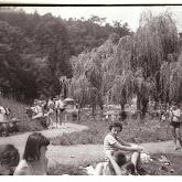 n008-014-1966-tabor-sikfokut.jpg