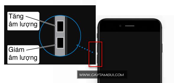 Nút tăng giảm âm lượng (volume) - Nút chụp ảnh trên iPhone