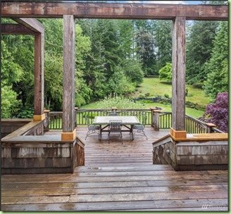 MLS_backyard-from-dining-door