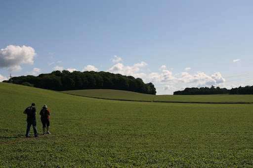 1008 067 Alton Circular, Hampshire, England