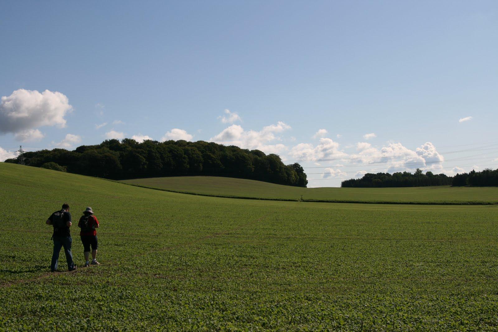 1008 067 Alton Circular, Hampshire, England Across the harvested fields