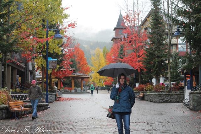 Whistler Lynn Canyon Stanley Park 032-001