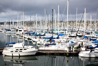 Boats in Shelter Island Marina in Point Loma