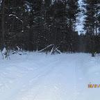 drivjagt januar 2011 002.jpg