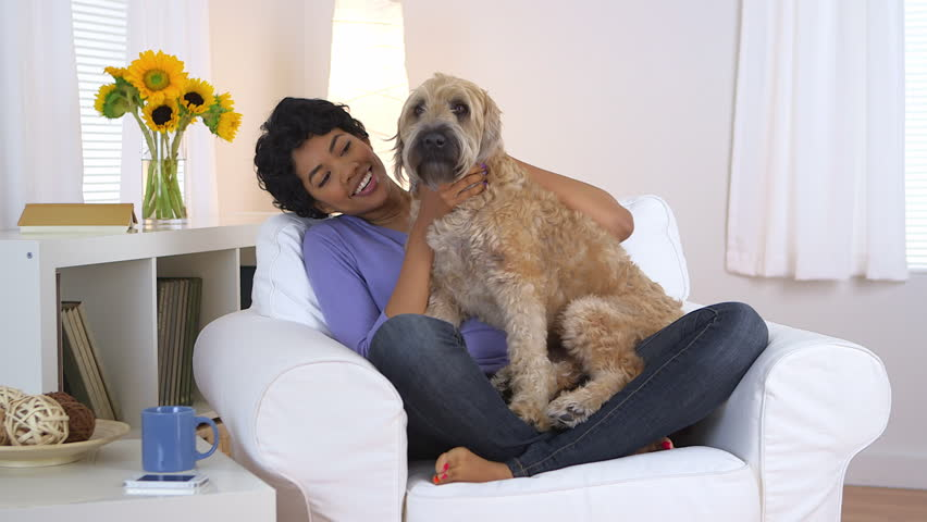 BEAUTIFUL FASHIONABLE PETS WOMEN CAN OWN IN THEIR HOME TO ENJOY 1