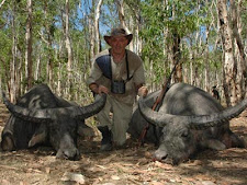 Alex Rosenstein USA with a buffalo double!! These 2 nice bulls fell close together, but not that close. The Landcruiser helped a little!