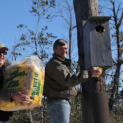 Fowl Duck Box 2013 023