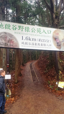 For our December visit to now we're on the forest path to Jigokudani Monkey Park. It is extremely muddy