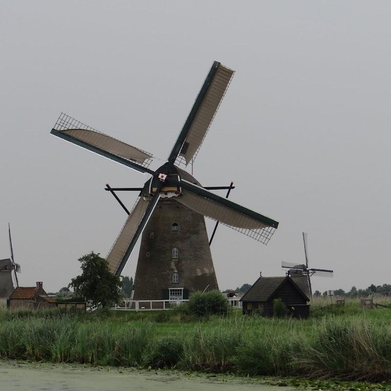 Day_6_Kinderdijk_09.JPG