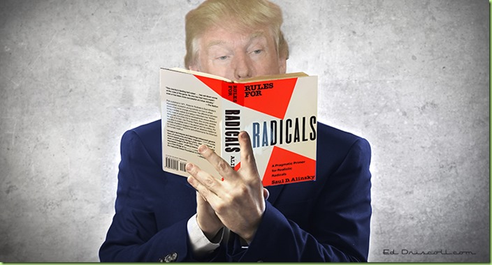 trump_reading_rules_for_radicals_article_banner_6-1-16-1