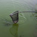 20150827_Fishing_Basiv_Kut_016.jpg