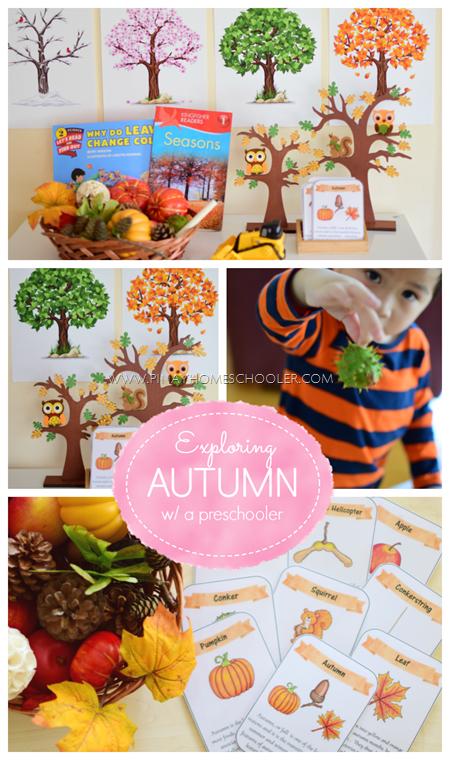 Montessori Autumn