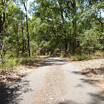 Sealed trail in Blackbutt Reserve (401857)