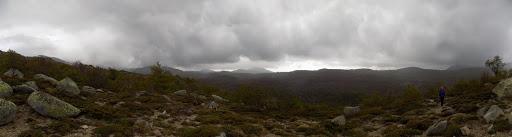...un plateau d'altitude où les hêtres sont désormais épars et torturés