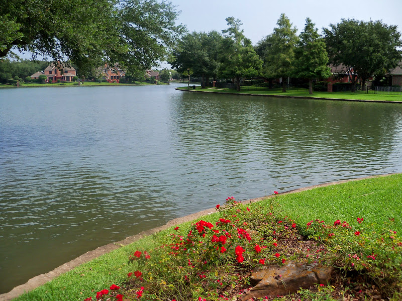 Park at New Territory - 116_3475.JPG