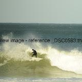 _DSC0593.thumb.jpg