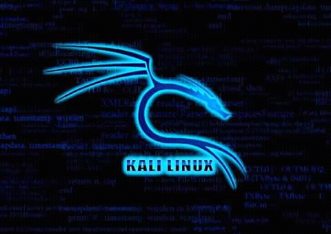 HOW TO INSTALL KALI-LINUX ON ANDROID