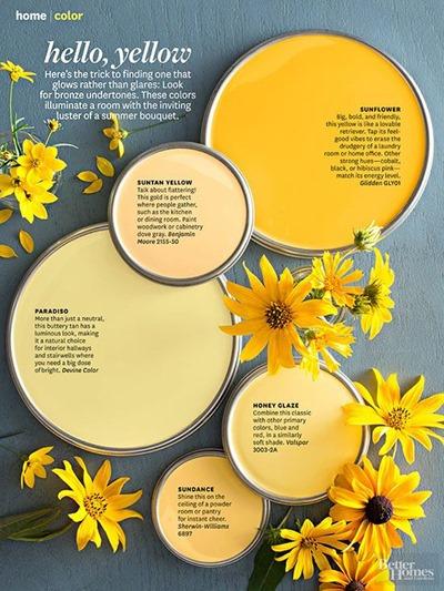 Hello, Yellow paint color scheme