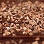 csoki154.jpg
