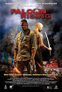 Falcon Rising Poster