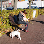 Holandia_JACKS PARADISE (30).jpg