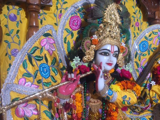 ISKCON Raipur Deity Darshan 03 jan 2017 (3)