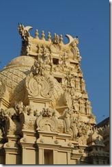 Ланка (561)