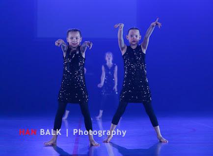 Han Balk VDD2017 ZA ochtend-8422.jpg