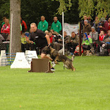 dhv Deutsche Meisterschaft 2015 - DSC_1765.JPG