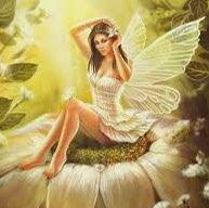 user Dana Williams apkdeer profile image