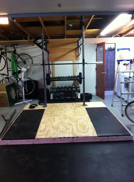 Crossfit rig plans wall mounted multi person