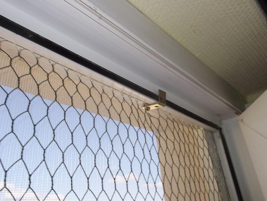 Bitte Nicht Auf Das Dreckige Fenster Achten