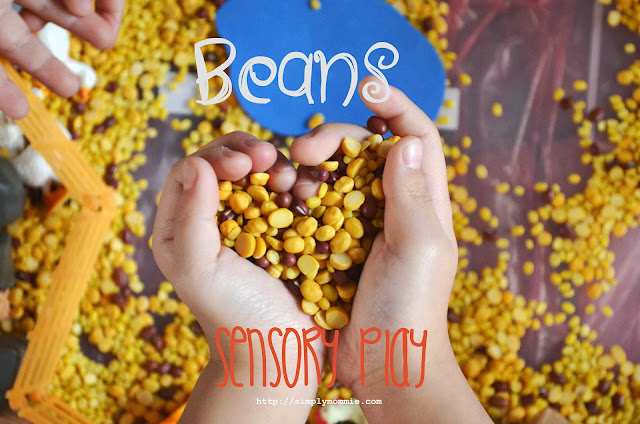 beans for sensory play